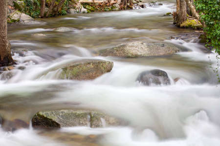 a photo of a water torrent in the forest photo