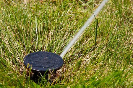 a field in summer is a sprinkler watering photo