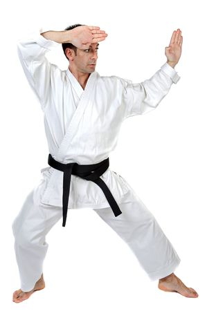 stance: Black belt karate expert with fight stance Stock Photo