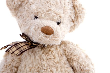 Brown teddy bear  a over white background