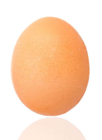 One egg - a over white background photo