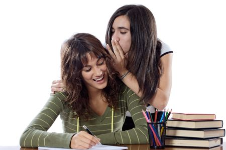 Girls friends whispering while studying on a white background Stock Photo - 3629815