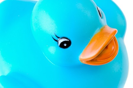 Blue plastic duck a over white background Stock Photo - 4465796