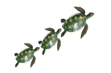 Familia de tres tortugas aislado más de blanco