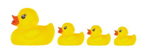 Family duck toy a over white background photo