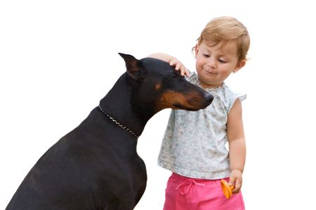 Nice couple. Adorable girl stroking a big dog isolated on white photo