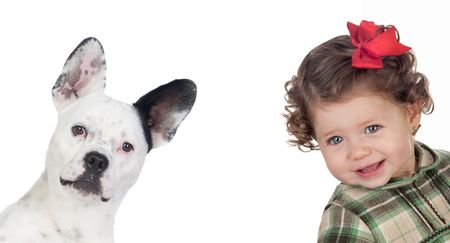 Beautiful baby girl and funny dog isolated on a over white background
