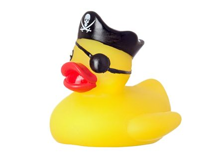 Funny pirate duck isolated on a over white background photo