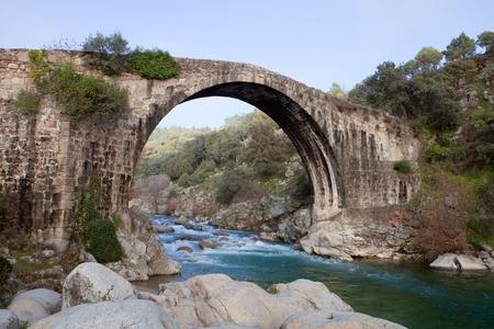 Big bridge with waterfall and green trees Stock Photo - 8682358