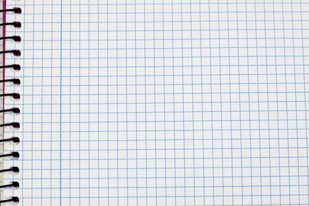 Image of a notebook in blank with leaves grid Stock Photo - 10491164