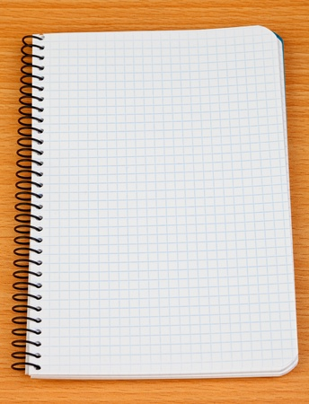 Image of a notebook in blank with leaves grid photo
