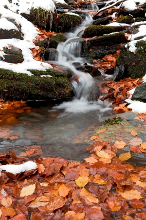 Snowy cascading water of a stream with autumn leaves photo