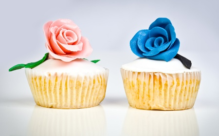 Colorful Cupcake in a vignette background photo