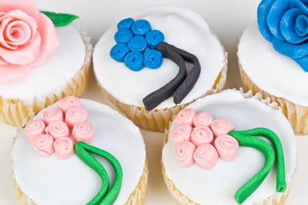 Colorful Cupcakes in a white background photo