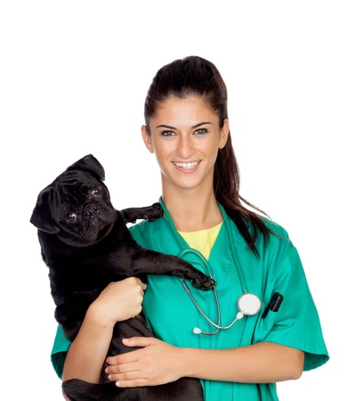 Brunette vet with a pug dog isolated on white background