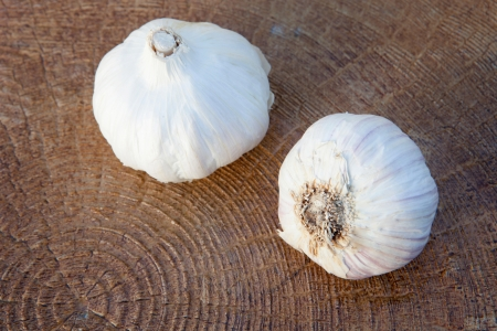 Closeup photo of two large garlic on a wooden background photo