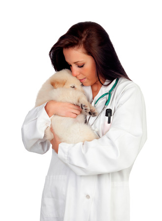 Pretty vet with a cute puppy isolated on white background photo