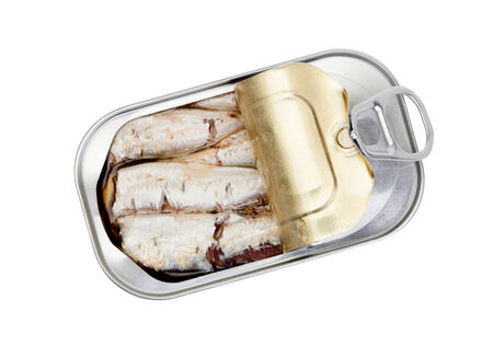 Open can of sardines in oil isolated on white background