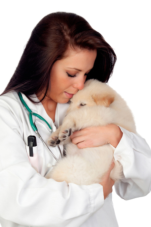 Pretty vet with a beautiful dog isolated on a white background photo