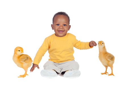 Adorable african baby sitting wity two little yellow chickens isolated on a white background photo