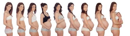 embarazada feliz: Im�genes de secuencia de una mujer durante todos los meses del embarazo Foto de archivo