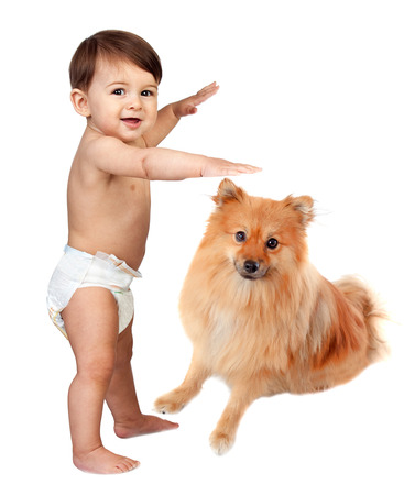 Beautiful baby in diaper with a brown dog isolated on a white background