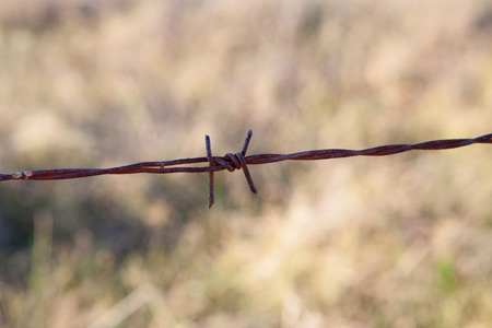 invade: Detail of a rusty metal fence in the field