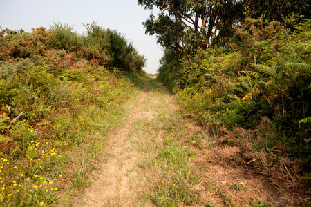 northern spain: Nice trail in the middle of nature in northern Spain Stock Photo