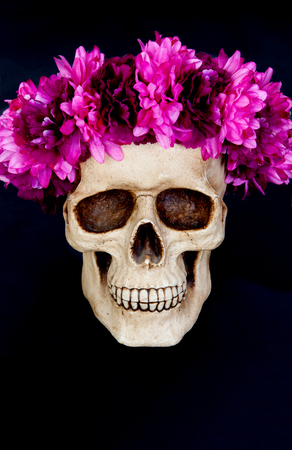 Skull with a wreath of pink flower isolated on a black background skull with a wreath of pink flower isolated on a black background stock photo 87488317 mightylinksfo