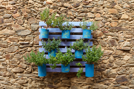 Beautifuful flowerpot recycling on a stone wall Imagens