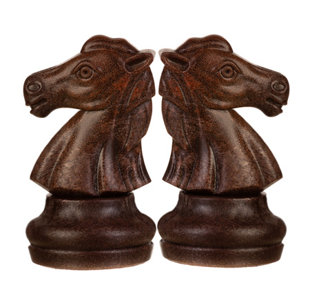 Brown and white knights back to back. Symmetrical pieces of chess