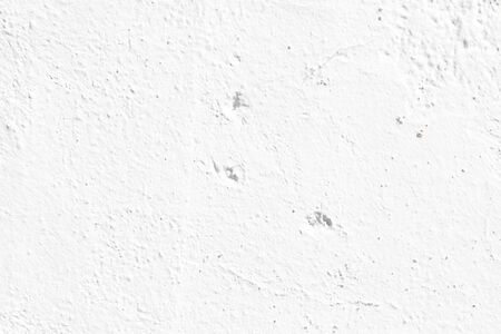 Crack in a white wall with cement brick surface