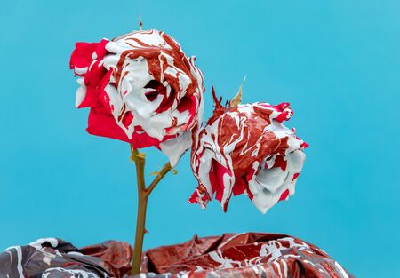 Stained red roses with paint on a blue background Banque d'images - 133514860