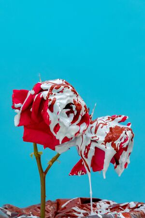 Stained red roses with paint on a blue background Banque d'images - 133514870