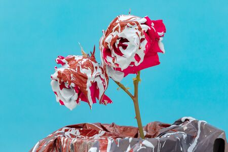 Stained red roses with paint on a blue background Banque d'images - 133514885