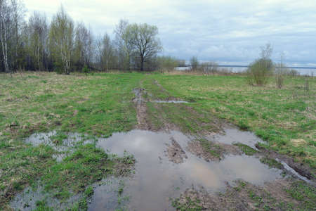 Spring puddles and mud on the road through green fields.