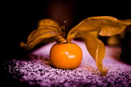 Small yellow orange tomato with branch on snow photo