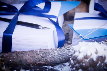 Writing pen on leaves wrapped in a blue bow Stock Photo