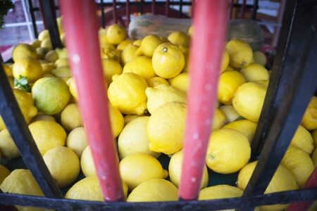 Large yellow lemons on a street market stall. No people