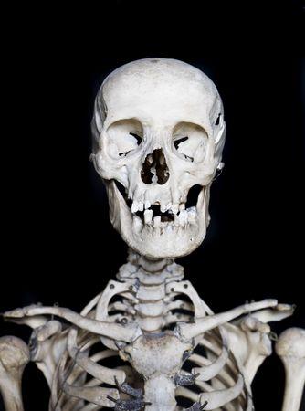 short focal depth: Skull with short focal depth towards black background