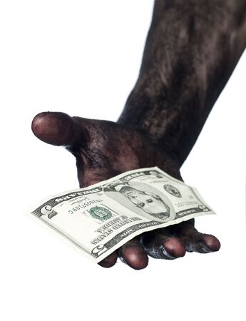 Dirty hand holding a five dollar bank note Stock Photo - 4852576