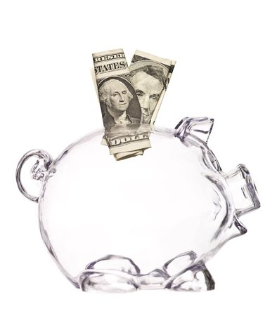 Transparent Pig Bank with two dollar bank-notes photo