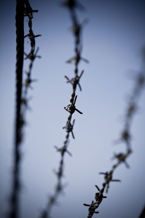 Abstract barbed wire with short focal depth Stock Photo - 5638948