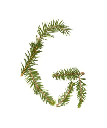 Spruce twigs forming the letter 'G' isolated on white Stock Photo - 5624529