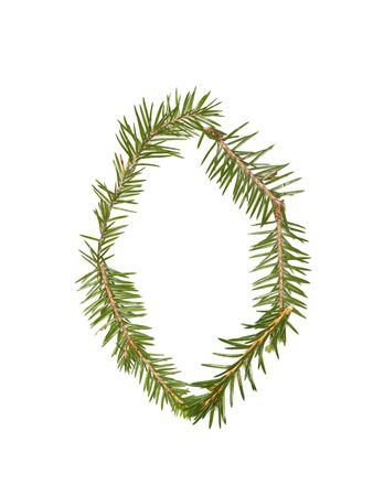 Spruce twigs forming the letter 'O' isolated on white Stock Photo - 5624548