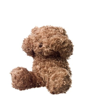Shy Teddy bear isolated on white background photo