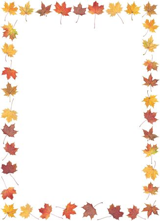 Frame of autumn leafs isolated on a white background Stock Photo - 5753724
