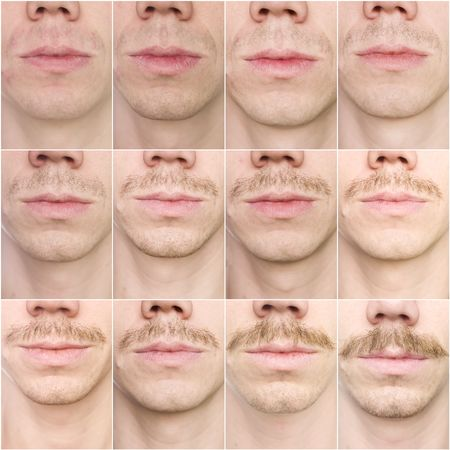 Close up of a mustache growing in 12 days photo