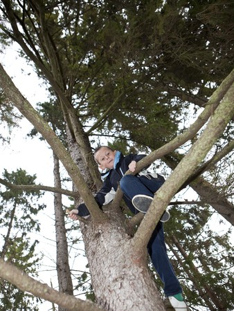 Young Boy climbing a tree in the forest photo