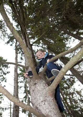 Young Boy Climbing a tree in the forest Stock Photo - 8168744